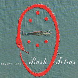beauty lies